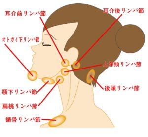 耳 の 後ろ 腫れ 耳の後ろの「しこり」は【悪性リンパ腫】の可能性あり!