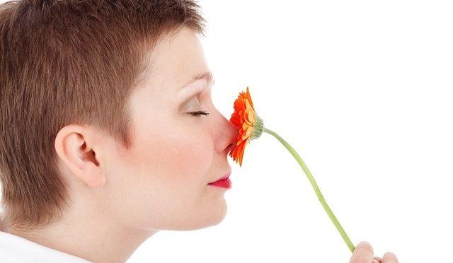 鼻中隔湾曲症とは?鼻の曲がりとは関係あるの?