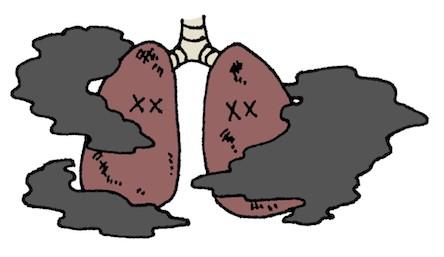 スピオルトレスピマットとスピリーバレスピマットの比較〜呼吸機能や運動能力への効果〜