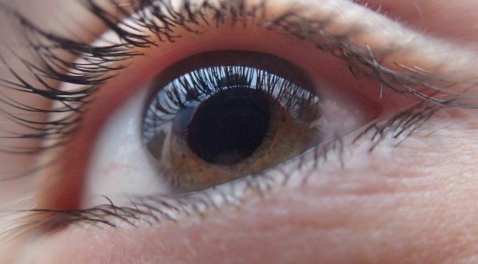 角膜移植が必要となる水泡性角膜炎とは 再生医療による新しい治療法の取り組みが進んでいます